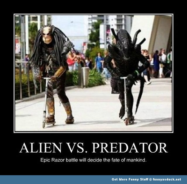 funny-alien-vs-predator-picture.jpg